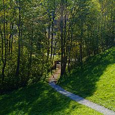 Das Umland der Gemeinde Bäretswil ist sehr idyllisch.