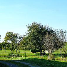 Das ländlich geprägte Umland von Hittnau.