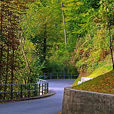 Kyburg ist umgeben von idyllischer Natur.