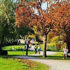 Die Gemeinde Pfäffikon bietet Freizeitmöglichkeiten für Jung & Alt.