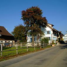 Blick auf die Gemeinde Seegräben.
